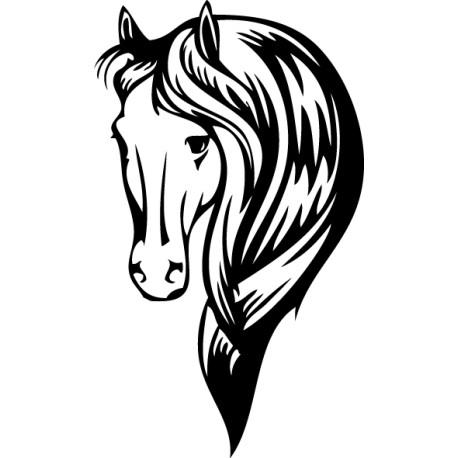 Tête cheval camarguais