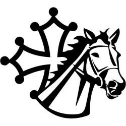 Cheval avec croix Occitane