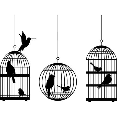 3 cages à oiseaux