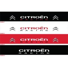 Bandeau pare soleil Citroën (1)