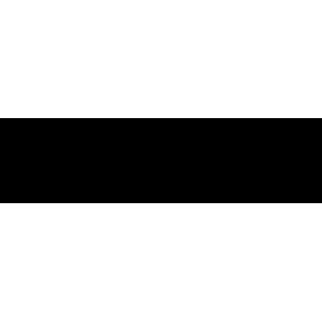 Fiat 500 Logo
